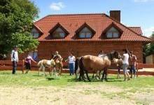 Konie - agroturystyka-karlowicka-dolina