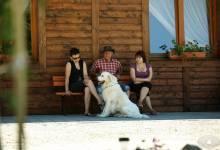 Najlepszy przyjaciel - agroturystyka-karlowicka-dolina